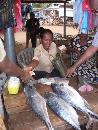 marché à Négombo
